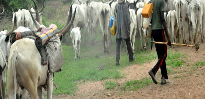Female victims of herdsmen attack in Benue discharged from hospital with bullets decry pain